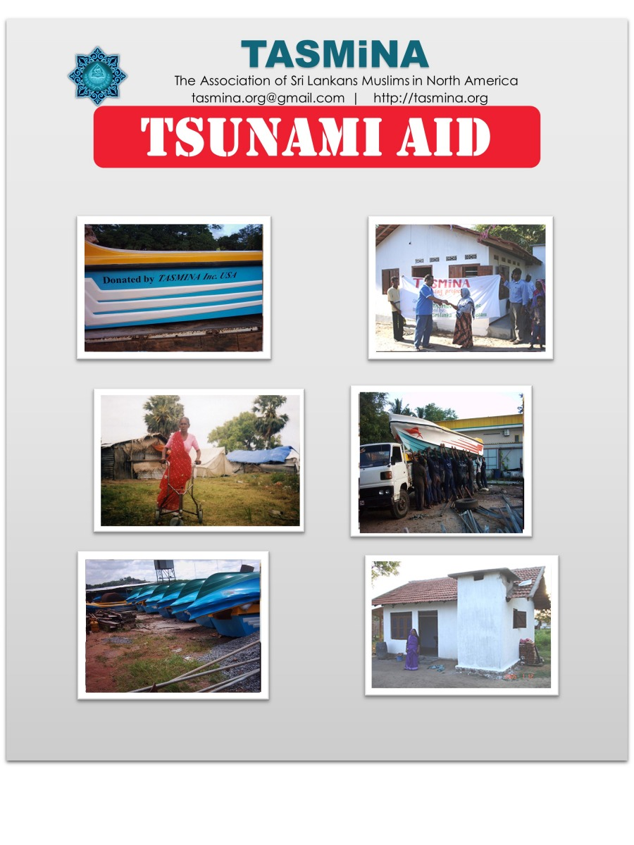 Tsuami-Project-Feature-2